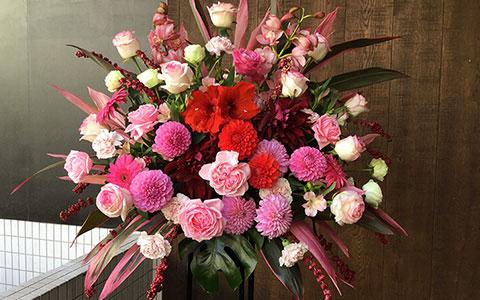 豊洲PITに贈る花