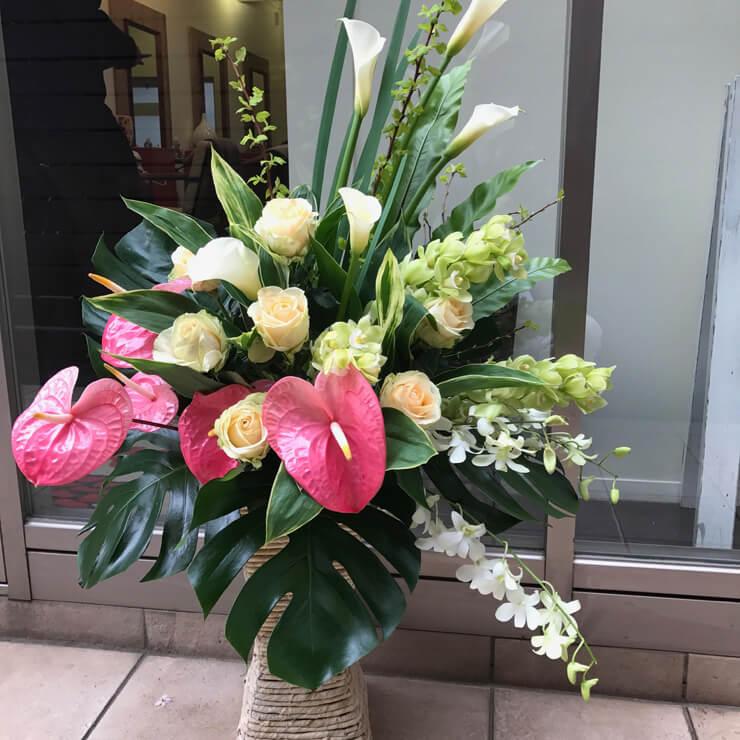 原宿 美容室様の開店祝い花
