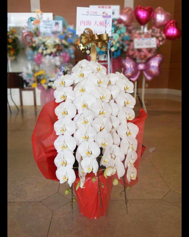 恵比寿ザ・ガーデンホール 内海大輔様のミュージカル出演祝い胡蝶蘭