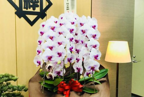 台東区元浅草 粋裕株式会社様のお祝い胡蝶蘭
