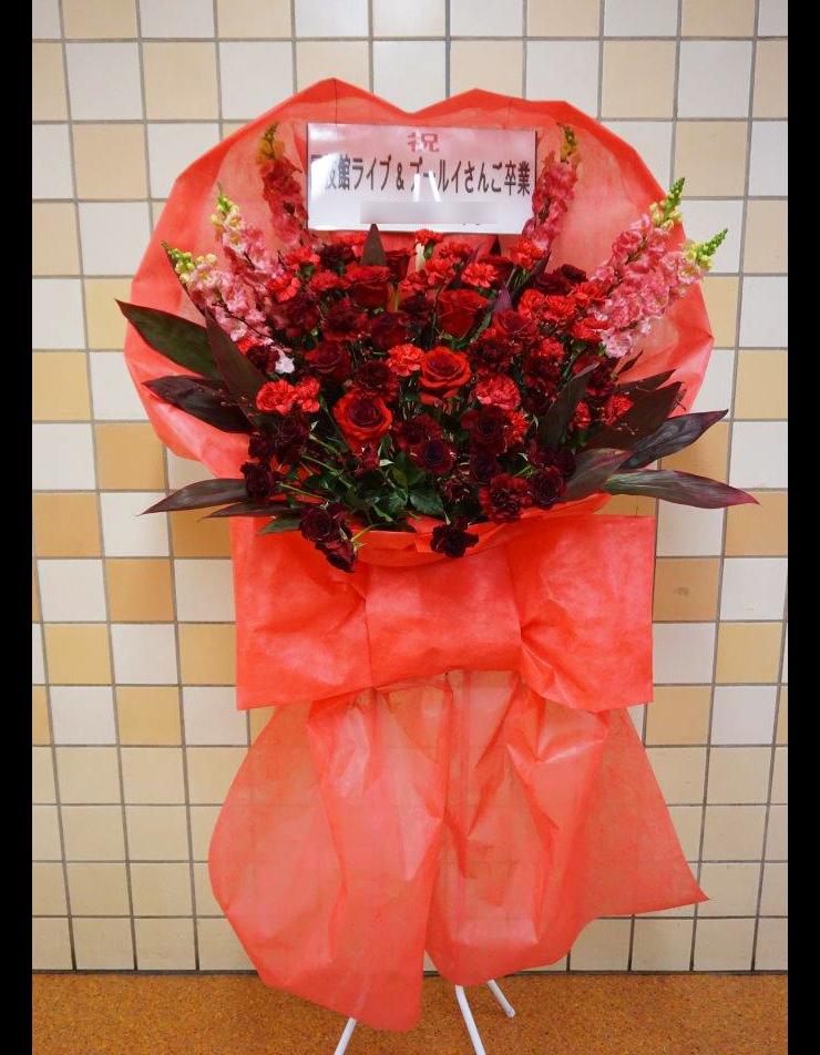 両国国技館 Bis様のワンマンライブ&プー・ルイ様卒業公演 花束風スタンド花 RED