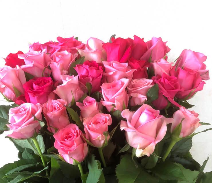 誕生日プレゼントピンク濃淡バラ花束30本