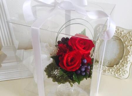 銀座 プロポーズの花 プリザーブドフラワーレッドローズ