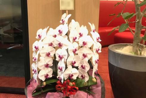 上野 丸紅ITソリューションズ様の昇進祝い胡蝶蘭