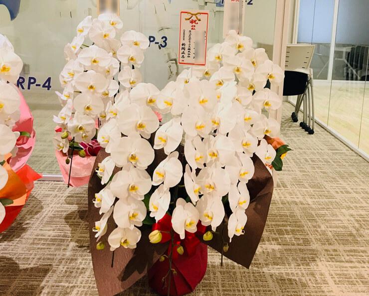台東区松が谷 カワダロボテックス株式会社様の移転祝い胡蝶蘭