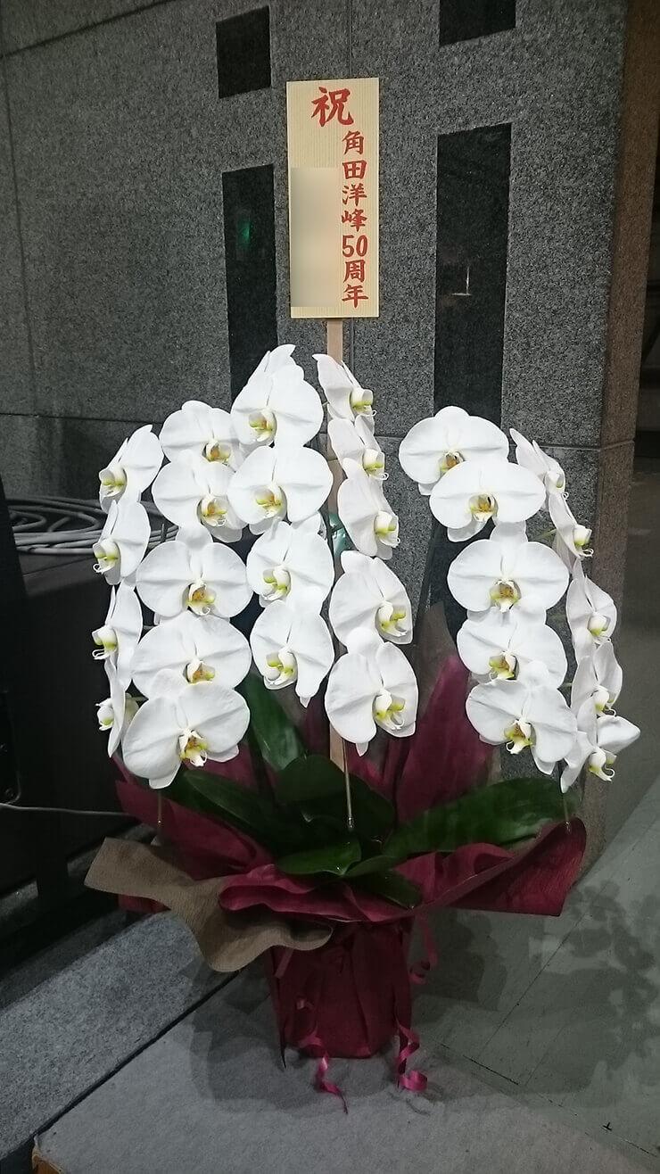 成増アクトホール 角田洋峰様の50周年祝い胡蝶蘭