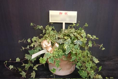吉祥寺 美容室BiBi aqueous様のリニューアルオープン観葉植物