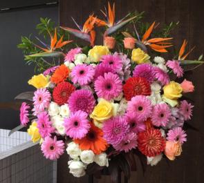 COTTON CLUB 田中れいな様のライブ公演祝いスタンド花