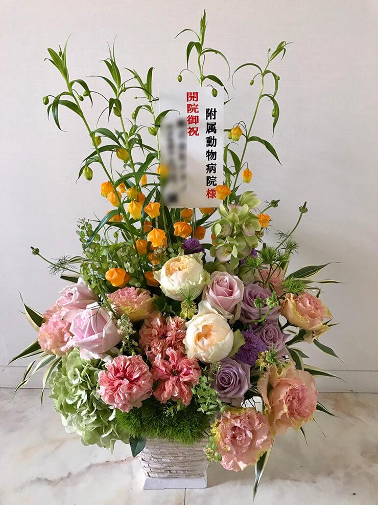 北千住 帝京科学大学 附属動物病院様の開院祝い花