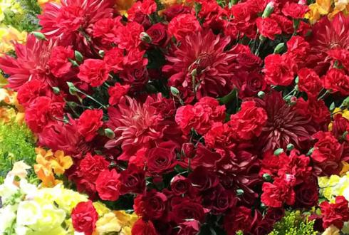 高円寺UFOクラブ 御茶海マミ様の4周年祝い&誕生日祝いスタンド花