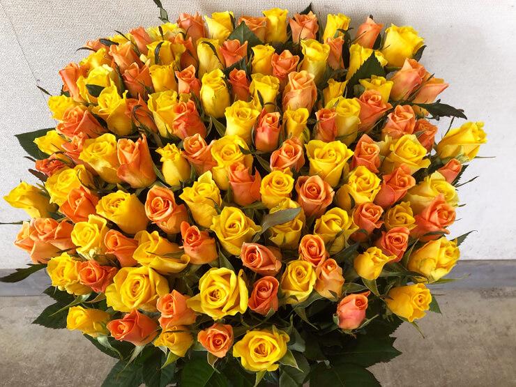 さいたま市 プロポーズに黄バラ花束108本