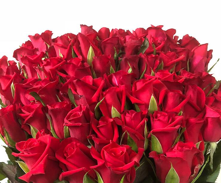 大阪府枚方市 60歳の誕生日 還暦祝いの赤バラ花束60本