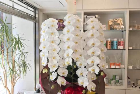 外神田 株式会社ナリカ様の創業100周年祝い胡蝶蘭5本立