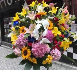 上野 新橋やきとんまこちゃん上野店様の開店祝いスタンド花