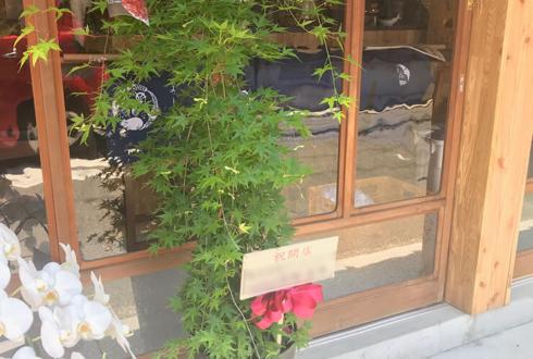 川崎市 居酒屋とよじろう様の開店祝い観葉植物