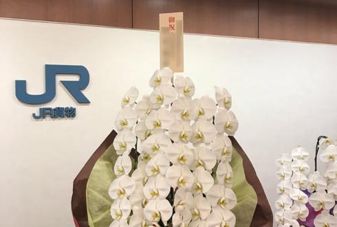 渋谷区千駄ヶ谷 日本貨物鉄道様の代表取締役社長就任祝い胡蝶蘭