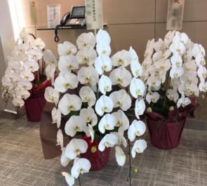 台東区 株式会社日本レストランエンタプライズ様の代表取締役社長就任祝い胡蝶蘭