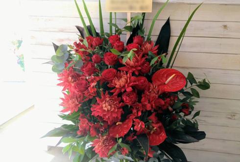 練馬 美容室HUMAN by camival様の開店祝い花