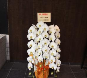 麻布十番 うなぎ時任様の開店祝い胡蝶蘭
