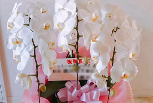 北千住マルイ ジュエリーマザーハウス北千住店様の開店祝い胡蝶蘭
