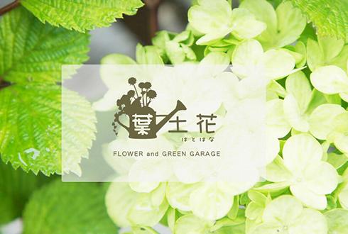 宿根草、観葉植物、お祝い花   葉土花(はとはな)