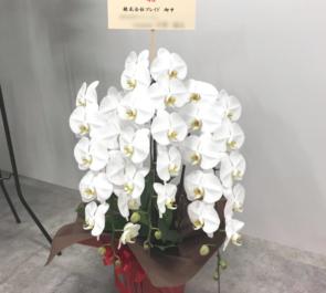 Ginza Six 株式会社プレイド様の移転祝い胡蝶蘭