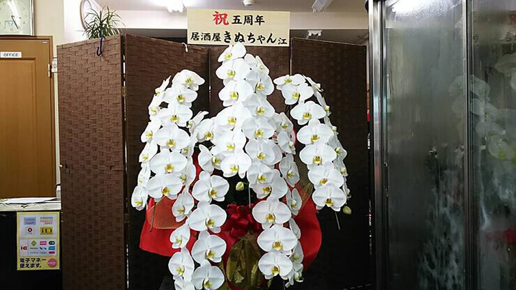 足立区梅田 きぬちゃん様の5周年祝い胡蝶蘭