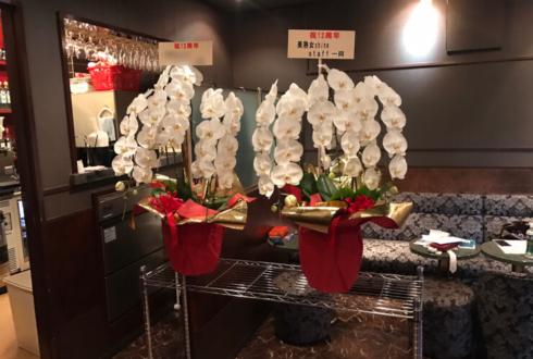 北千住 美魔女 Legend様の12周年祝い胡蝶蘭