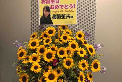 TFT HALL1000 =Love 瀧脇笙古様の個別握手会祝い&生誕祭ひまわりスタンド花