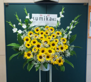 日本武道館 sumika様のワンマンライブ公演祝いひまわりスタンド花