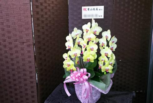 シアタークリエ 栗山絵美様のミュージカル出演祝い胡蝶蘭