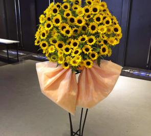 ZeppDivercityTokyo 高橋駿一様の舞台出演祝いひまわりスタンド花