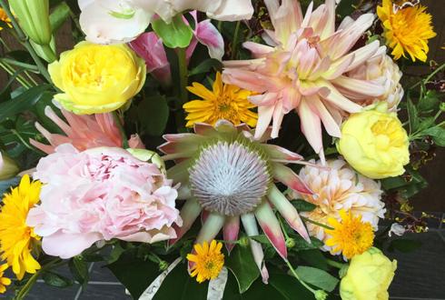 渋谷 クラウド・インベストメント株式会社様の移転祝い花