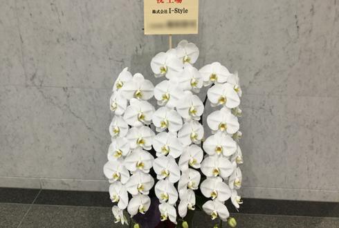 芝大門 株式会社アイスタイル様の上場祝い胡蝶蘭