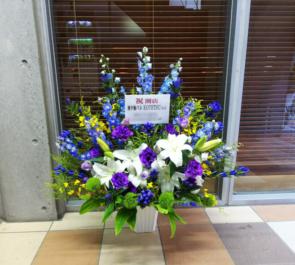 新宿 地中海バル KOTETSU様の開店祝い花