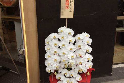 俺のBakery&Cafe 東銀座歌舞伎座前様の開店祝い胡蝶蘭五本立ち