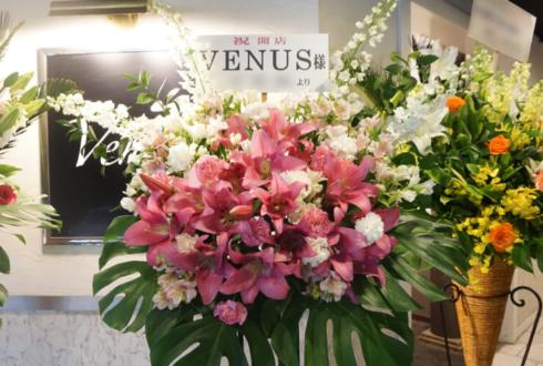 赤坂 VENUS様の開店祝いスタンド花