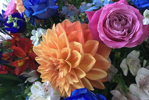 恵比寿Act square 木梨憲武様の『PARTY LIVE 木梨の会。』公演祝いスタンド花