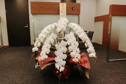 浜松町 シノケングループ様の移転祝い胡蝶蘭