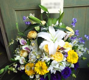 世田谷区 移転祝い花
