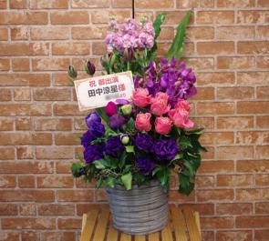 明治座 田中涼星様の舞台出演祝い花