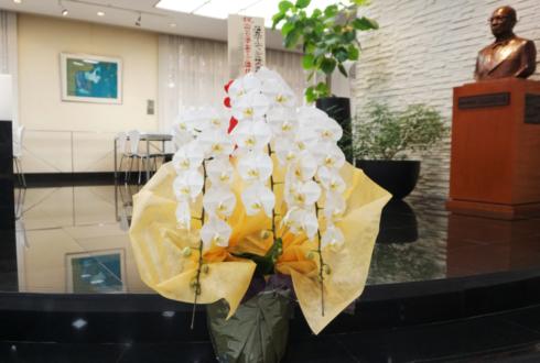 新宿 日清食品ホールディングス株式会社様の大坂なおみ選手全豪オープン優勝祝い胡蝶蘭