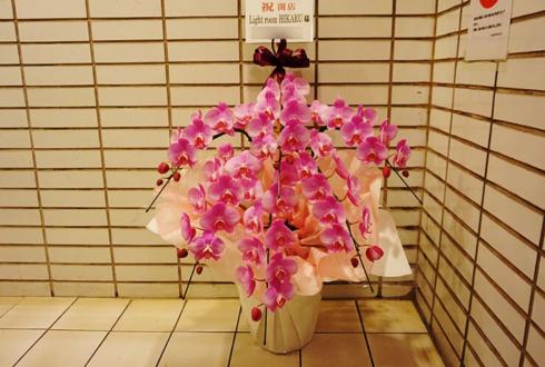 六本木 Light room HIKARU様の開店祝い胡蝶蘭
