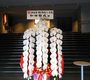 新国立劇場 和田雅成様の舞台出演祝い胡蝶蘭 ロング60輪