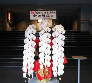 新国立劇場 和田雅成様の舞台出演祝い胡蝶蘭 ロング63輪