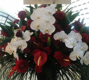 天王洲銀河劇場 岩田有弘様の舞台出演祝いアイアンスタンド花