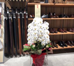 ONLY PREMIO TOKYO有楽町店様の開店祝い胡蝶蘭三本立ち