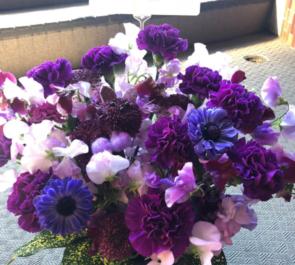 シアターグリーン BOX in BOX THEATER 太田将熙様の舞台『紫猫のギリ』出演祝い楽屋花