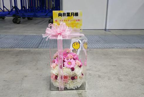 東京ビッグサイト 乃木坂46向井葉月様の握手会&ナナマルサンバツ出演祝い花