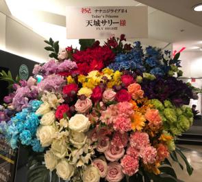 Mt.RAINIER HALL SHIBUYA PLEASURE PLEASURE 22/7 天城サリー様のライブ公演祝い10colorsアイアンスタンド花